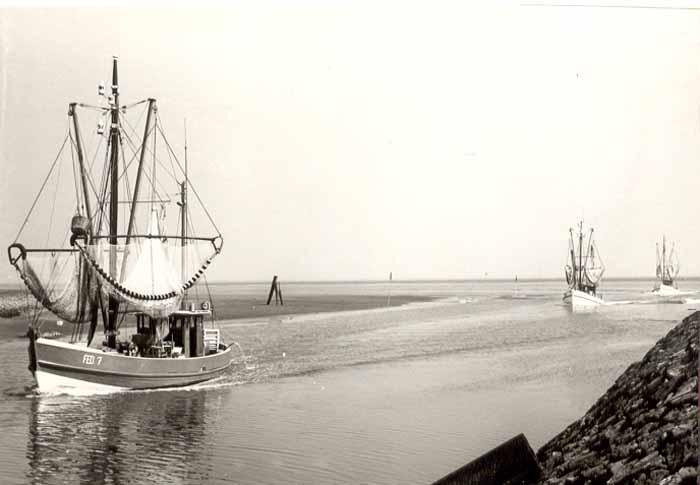 Fischereigesellschat Geschichte Teil 5