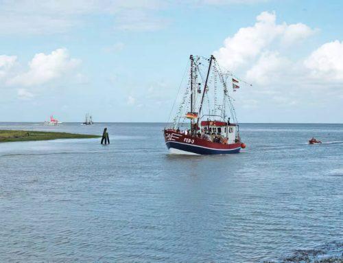 Webcams an der Nordseeküste